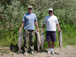 Fishing the sacramento river